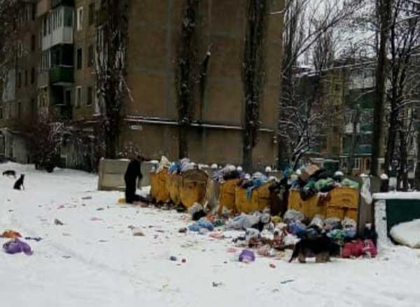 Мусорный коллапс в Макеевке. Жители жалуются на забитые контейнеры