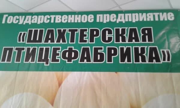 В ДНР еще одна экоктастрофа. Жители в панике