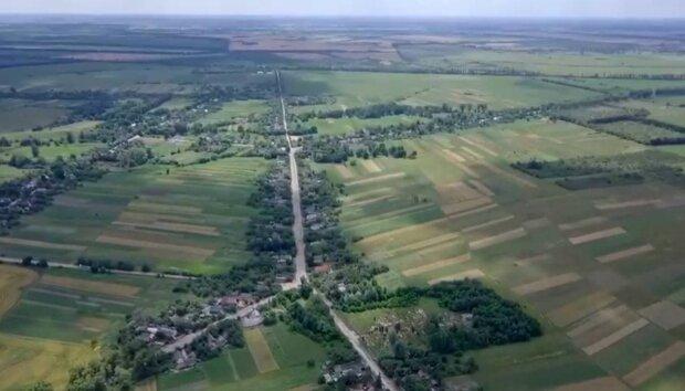 Расстаться со своими гектарами захотят немногие: стали известны цены на землю в Украине после запуска рынка