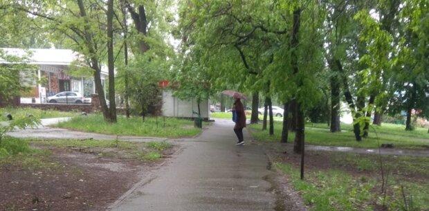 Духота, ливни и грозы: прогноз погоды на среду