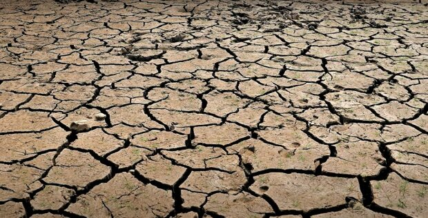 Никакой третьей мировой: мир накроет мощная засуха. В ООН бьют тревогу