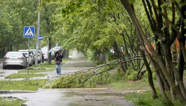 Разрушительные ливни, потопы и сильная жара: ученые назвали причины аномальной погоды в Украине